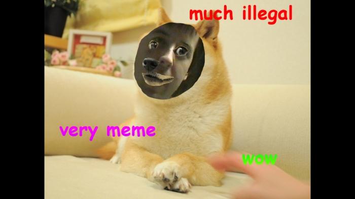 doge-meme-illegal